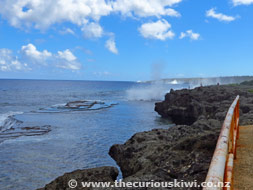 Mapu 'a Vaea Blow Holes