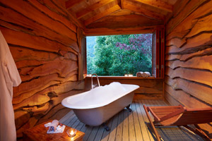 The Resurgence Luxury Eco Lodge - Bath